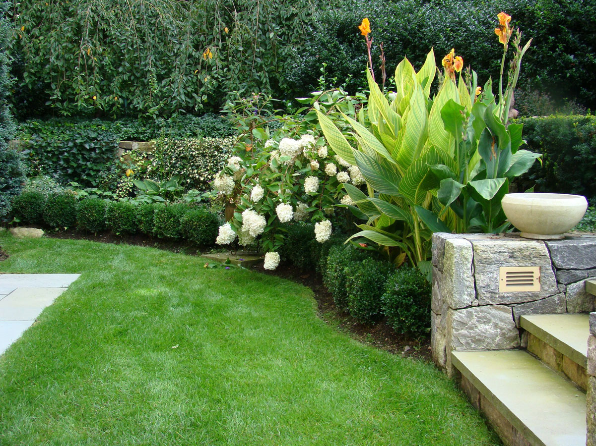 Lawn With Stone Steps And Plantings