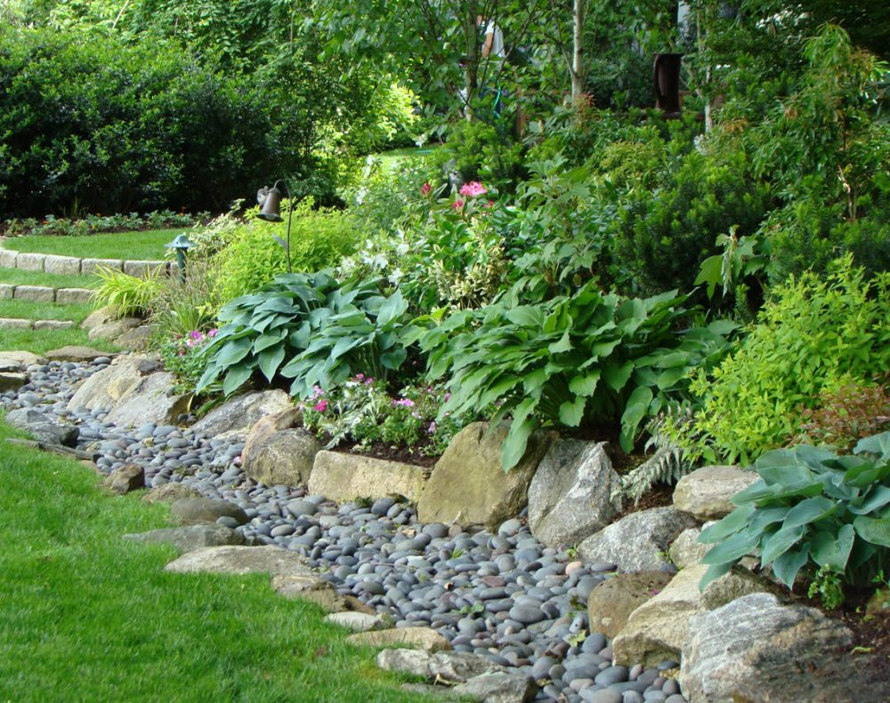 Dry river bed with plantings in Westchester