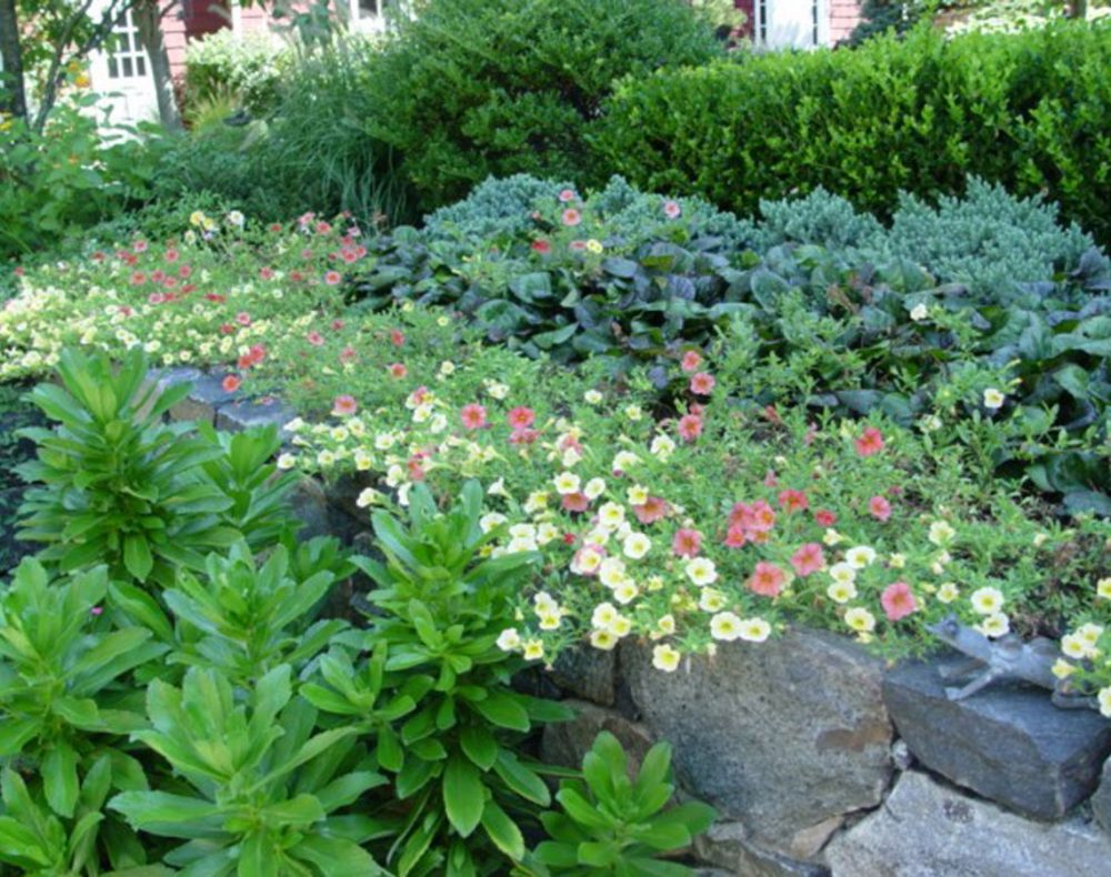 garden plantings with stone wall