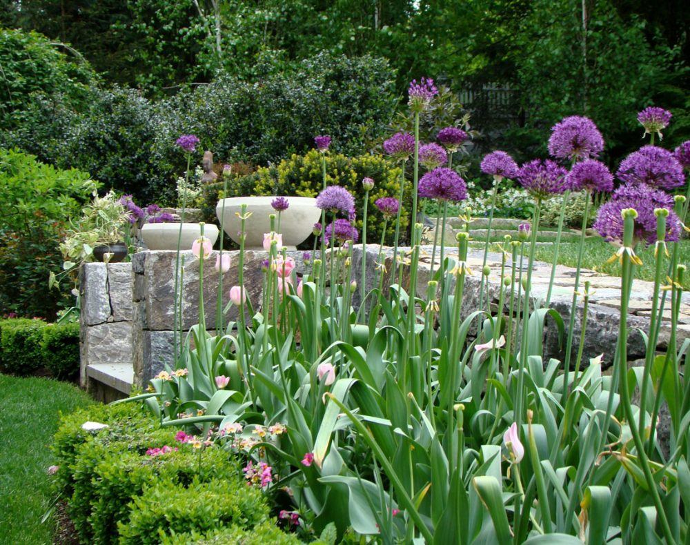 Spring plantings in Westchester garden with stone wall