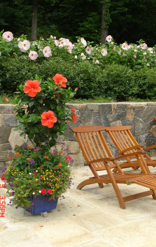 Fairfield landscape design deck chairs