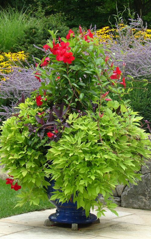 Fairfield landscape design planter urn with garden