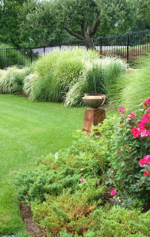 Westchester landscape design - lawn and grasses