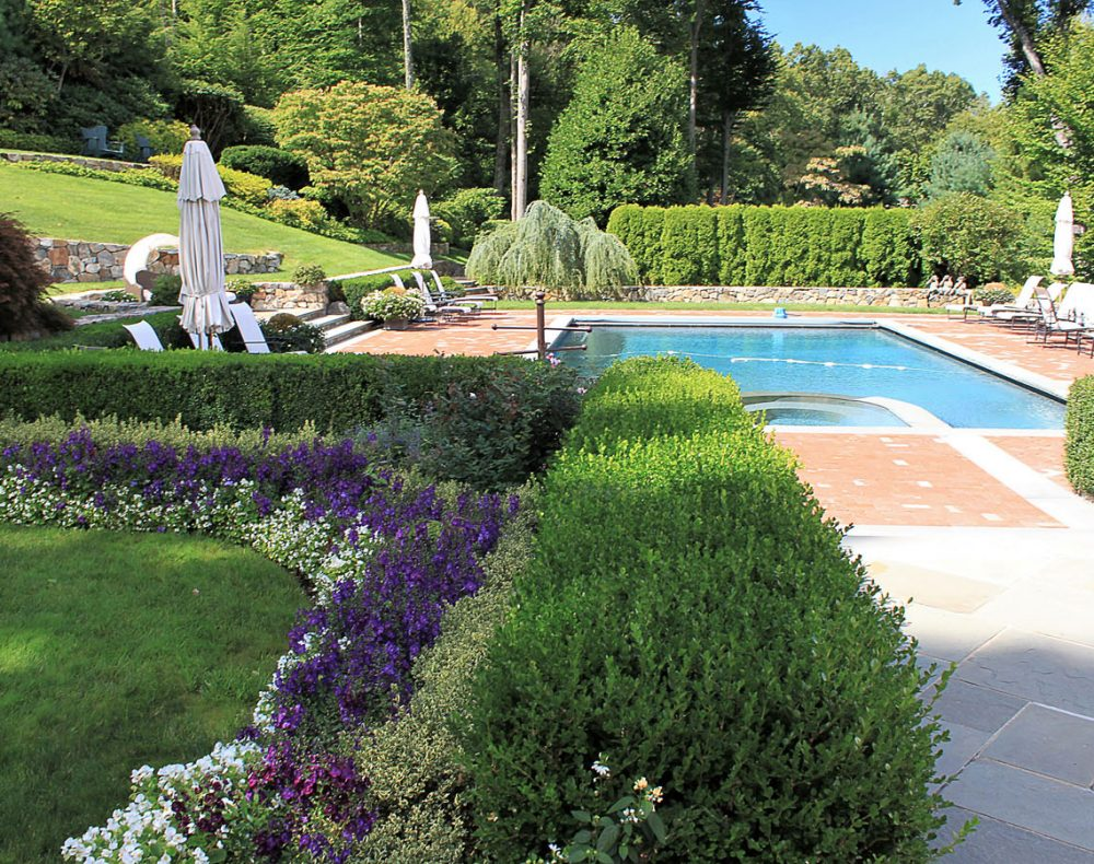 Garden design with saltwater pool
