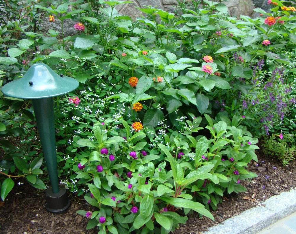 Arts & Crafts home garden lights and planting beds